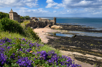 Castle and East Sands, St. Andrews, Fife. With its abundant renewables resource and developed energy infrastructure, the East Neuk could become a hub for power-to-hydrogen projects.